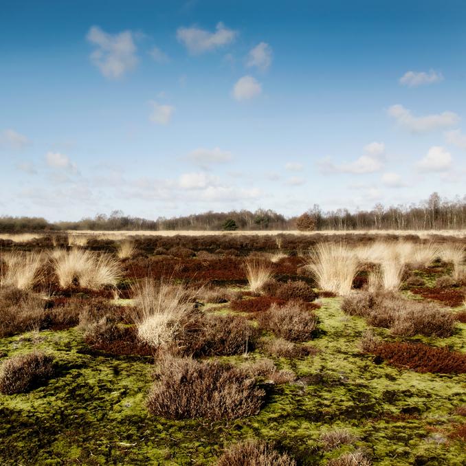 Provincie Overijssel - job boersma fotografie